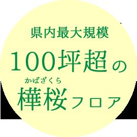 県内最大規模100坪超の樺桜フロア(かばざくらフロア)
